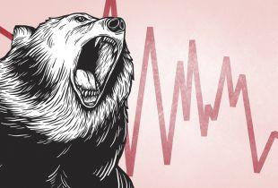 The Bear Awakes
